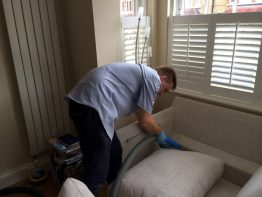 Upholstery Cleaning (3)